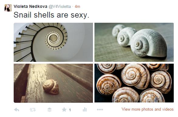 snailstweet