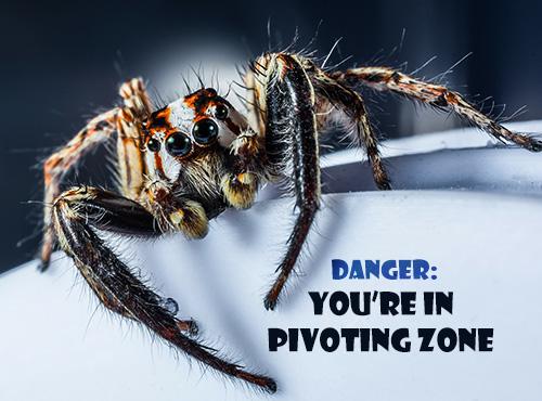pivotingzone2